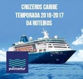 Cruzeiros  2016-2017